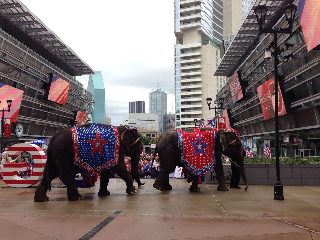 . Dallas welcomed the Republican National Convention host committee at American Airlines Center, Thursday, June 12, 2014. (Louis DeLuca/Staff Photographer)
