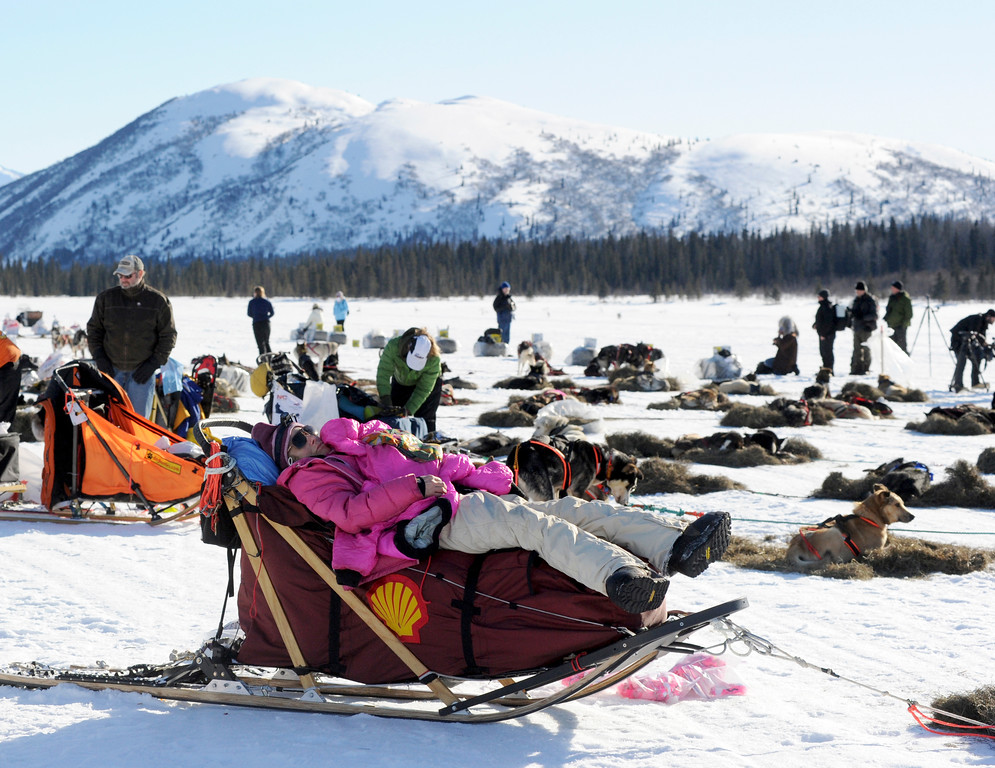 . In this March 3, 2014 photo, DeeDee Jonrowe sleeps on her sled at the Rainy Pass checkpoint during the 2014 Iditarod Trail Sled Dog Race near Puntilla Lake, Alaska. (AP Photo/The Anchorage Daily News, Bob Hallinen)
