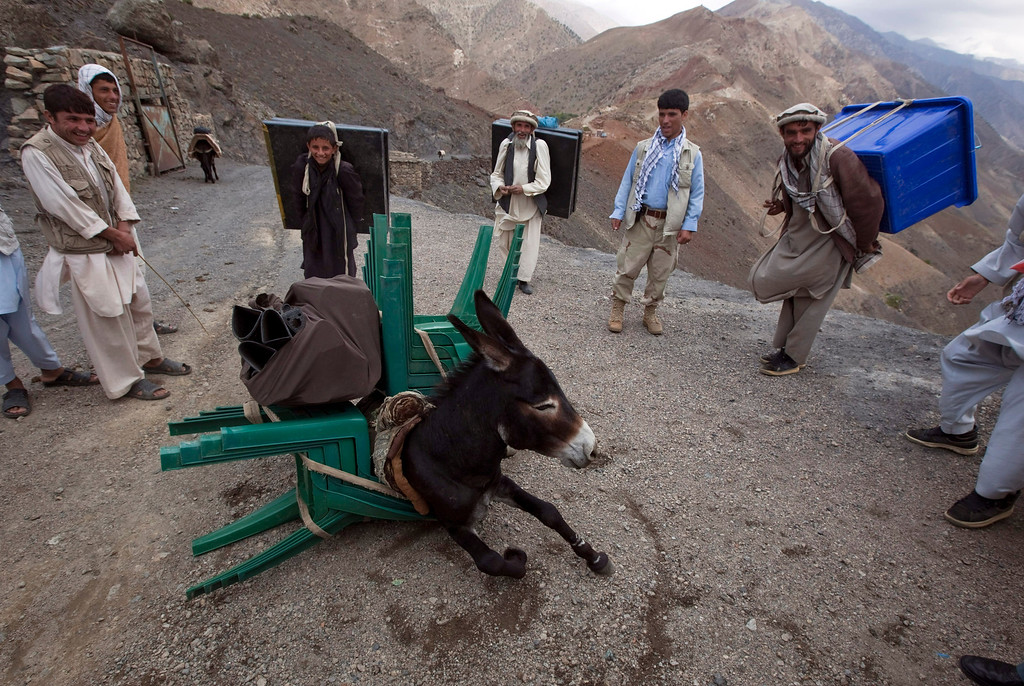 . A donkey collapses after being overloaded with election materials to be transported to a village unreachable by vehicles, in Panjshir province, north of Kabul September 17, 2010. REUTERS/Ahmad Masood