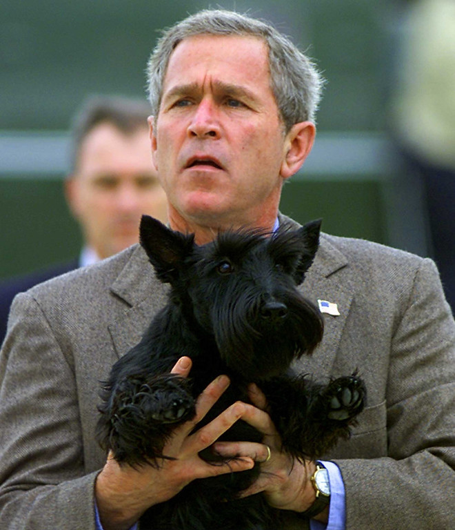 . President Bush holds his dog Barney as he prepares to board Air Force One at the Texas State Technical College Airport in Waco, Texas, Sunday, Nov. 18, 2001. Bush spent the weekend at his Crawford ranch and is headed back to Washington where he is expected to sign the aviation security bill on Monday.   (AP Photo/Doug Mills)