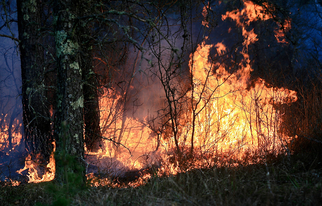 . A wildfire actively burns through the forest along Sutfin Road east of Duck Pond Road in Highland Township, Wis., east of Solon Springs, Wis.,  late Tuesday, May 14, 2013.  (AP Photo/The Duluth News-Tribune, Clint Austin)