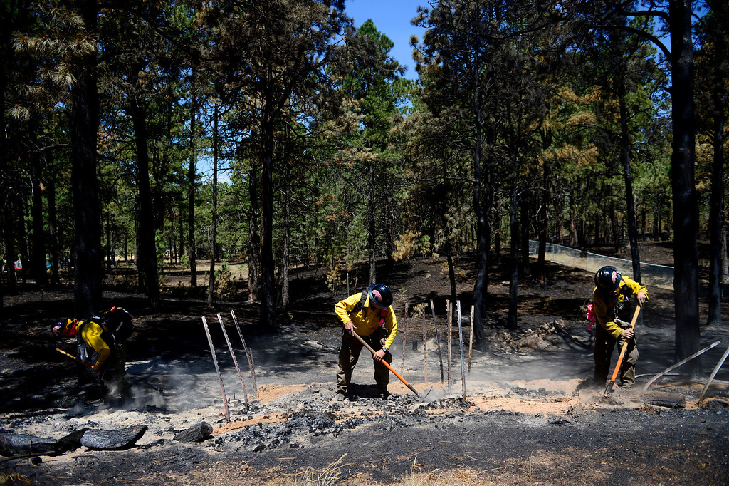 . BLACK FOREST, CO - JUNE 19: Long Canyon Wildland firefighters from left to right Lynn Reynolds, Chief Andrew Rose and Sean Sortland check for hotspots as the crew coal trails at a burned property on Pine Glen Drive. Only one home on the loop of Pine Glen Drive burned in the fire. (Photo by AAron Ontiveroz/The Denver Post)