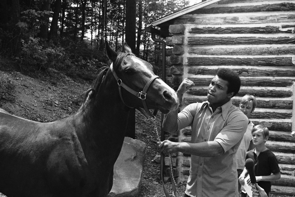 . Muhammad Ali shows off his new horse at the opening of his training camp on July 17, 1974  in Deer Lake, Pa. in preparation for his championship fight with George Foreman in September in Zaire, Africa. In top right photo the horse rears away from Ali as he was leading it away and in bottom photo Ali mockingly makes a fist at the horse in jest for rearing away. Ali plans to ride the horse as part of his training. (AP Photo/ Paul Vathis)