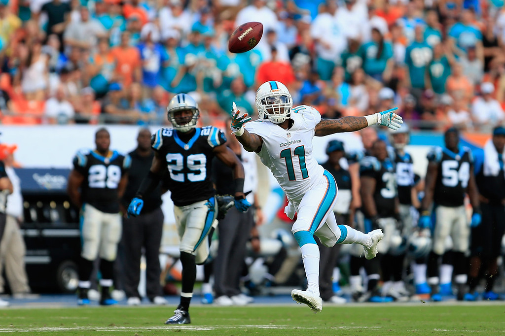 . Mike Wallace #11 of the Miami Dolphins stretches to try and make a catch as Drayton Florence #29 of the Carolina Panthers looks on at Sun Life Stadium on November 24, 2013 in Miami Gardens, Florida.  (Photo by Chris Trotman/Getty Images)