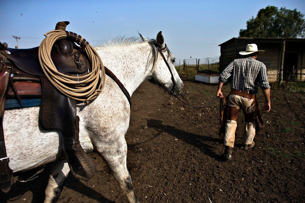 . Amit, an Israeli cowboy, leads his horse after working with cattle on a ranch just outside Moshav Yonatan, a collective farming community, about 2 km (1 mile) south of the ceasefire line between Israel and Syria in the Golan Heights May 2, 2013. REUTERS/Nir Elias