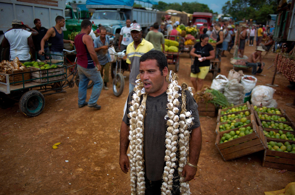 . In this Sept. 30, 2013 photo, farmer Asley Cruz, 35, wears a string of garlic on his shoulders as he yells prices at the 114th Street Market on the outskirts of Havana, Cuba. The marketís bustle is a result of economic reforms begun in 2010 by President Raul Castro, which includes relaxing rules on private farming. In another reform, Cuban authorities recently authorized small farmers to also sell directly to hotels and tourist centers beginning this month. (AP Photo/Ramon Espinosa)