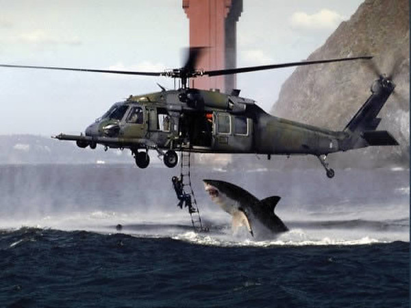 PHOTOS: Unbelievable shark attack during training exercise in San Francisco