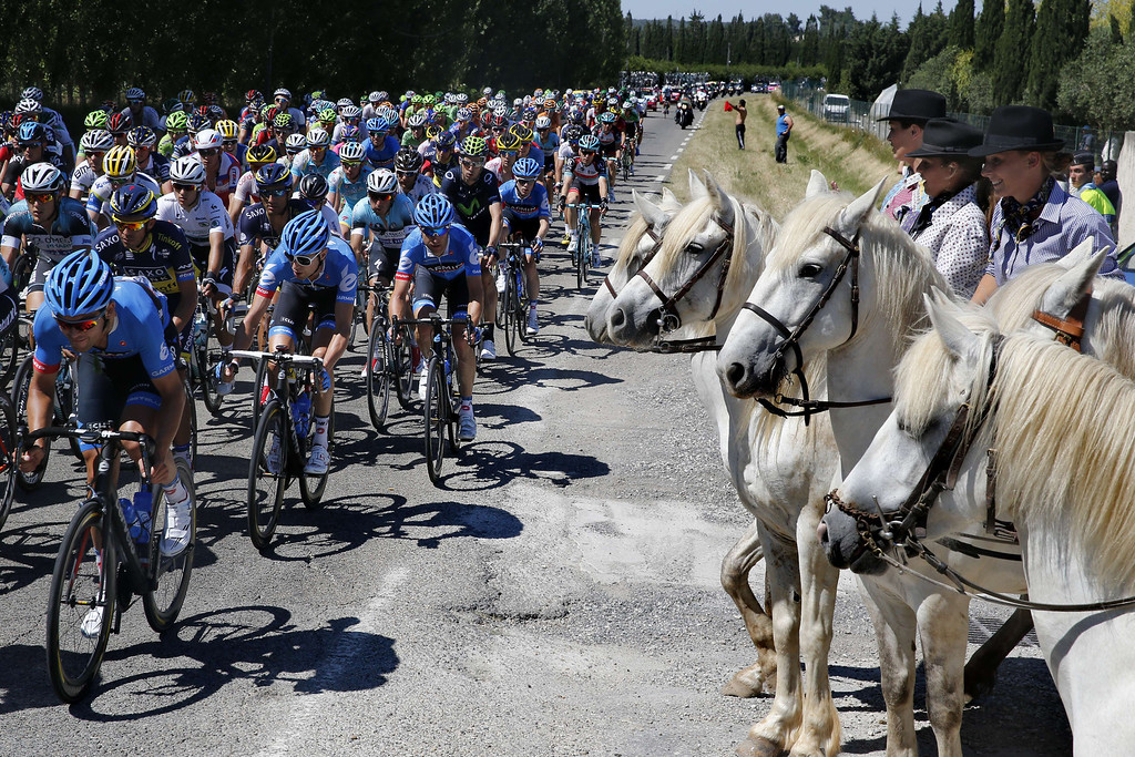. The pack rides past horses during the 176.5 km sixth stage of the 100th edition of the Tour de France cycling race on July 4, 2013 between Aix-en-Provence and Montpellier, southern France. PASCAL GUYOT/AFP/Getty Images