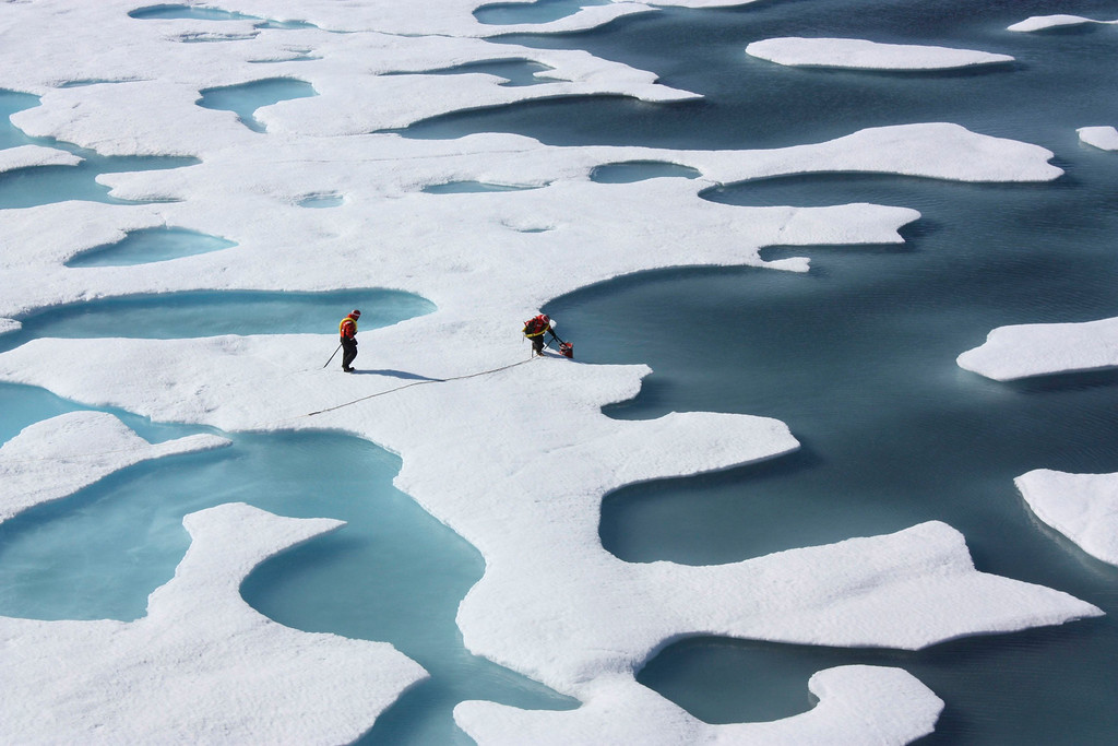 . The crew of the  U.S. Coast Guard Cutter Healy, in the midst of their ICESCAPE mission, retrieves supplies for some mid-mission fixes dropped by parachute from a C-130 in the Arctic Ocean in this July 12, 2011 NASA handout photo obtained by Reuters June 11, 2011.  Scientists punched through the sea ice to find waters richer in phytoplankton than any other region on earth.  Phytoplankton, the base component of the marine food chain, were thought to grow in the Arctic Ocean only after sea ice had retreated for the summer. Scientists now think that the thinning Arctic ice is allowing sunlight to reach the waters under the sea ice, catalyzing the plant blooms where they had never been observed. REUTERS/Kathryn Hansen/NASA