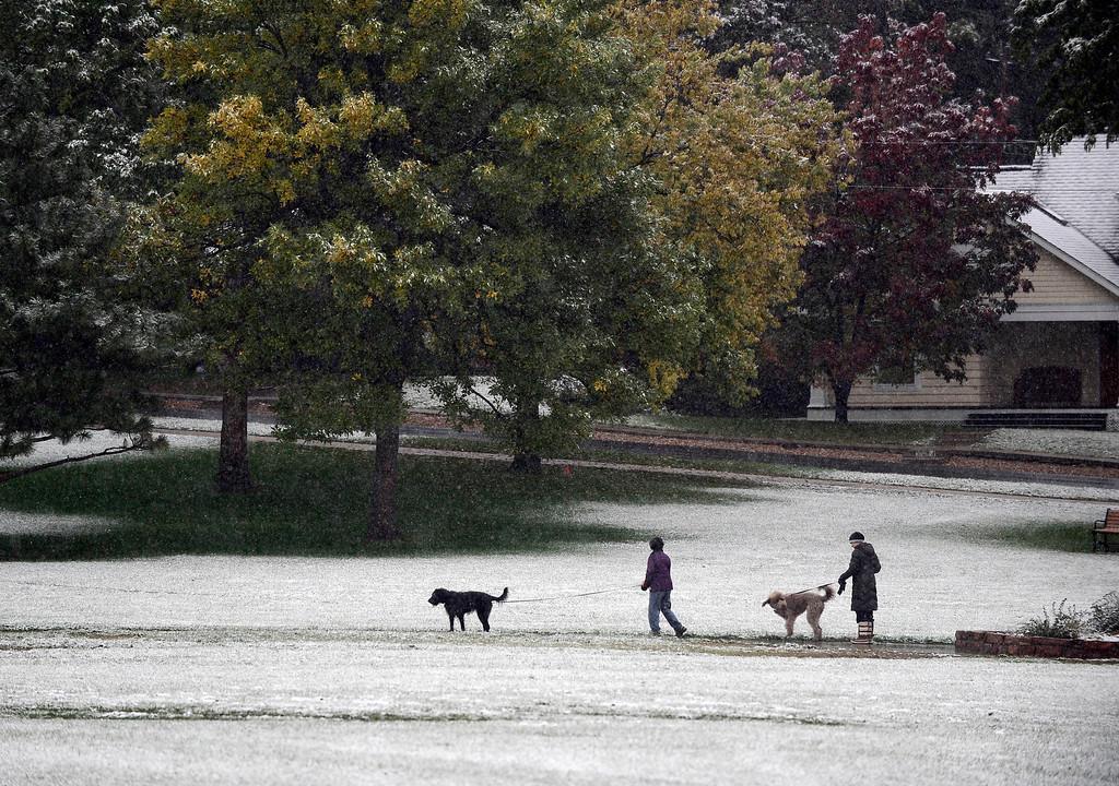 . Dog walkers in North Boulder Park  in Boulder on Friday 4, 2013.  Photo by Paul Aiken, Boulder Daily Camera