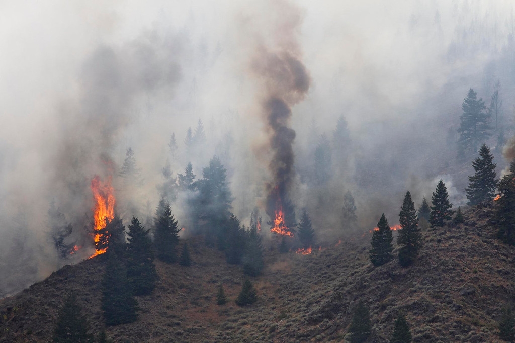 . Firefighters continue to battle the Beaver Creek Fire in the Wood River Valley as it drops down the canyon hillside west of Hailey Saturday Aug. 17, 2013. (AP Photo/Idaho Statesman, Darin Oswald)