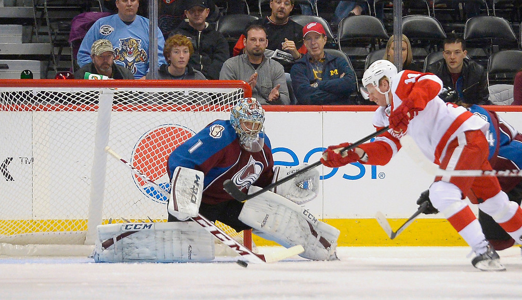 . Colorado Avalanche goalie Semyon Varlamov (1) makes a save on a shot by Detroit Red Wings right wing Daniel Alfredsson (11) during the first period October 17, 2013 at Pepsi Center.(Photo by John Leyba/The Denver Post)