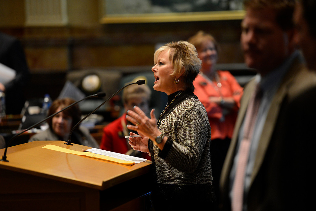 . DENVER, CO. - FEBRUARY 15: Representative Amy Stephens giving argument against HB 1224 prohibiting large capacity ammunition magazines in the Colorado House at the Denver State Capitol February 15, 2013. Denver, Colorado. (Photo By Joe Amon/The Denver Post)