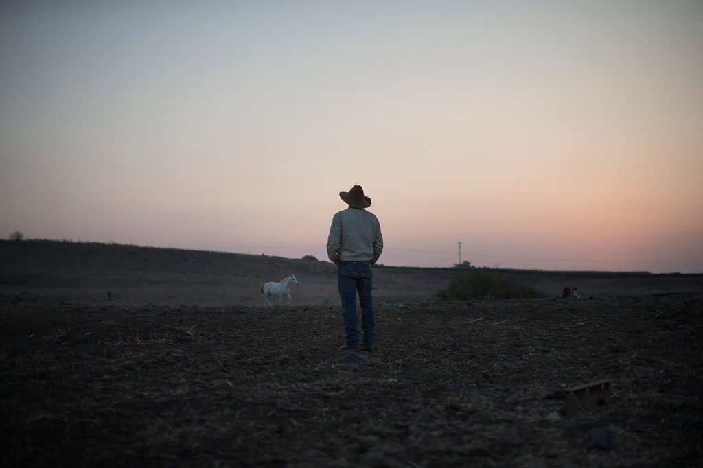 . Israeli cowboy Yechiel Alon begins his day at dawn in the Merom Golan ranch on November 14, 2013 in the Israeli-annexed Golan Heights. IIsraeli cowboys have been growing beef cattle in ranches on the Golan Heights disputed strategic volcanic plateau for over 30 years, Land which is also used by the Israeli army as live-fire training zones. The disputed plateau was captured by Israel from the Syrians in the 1967 Six Day War and in 1981 the Jewish state annexed the territory.   (Photo by Uriel Sinai/Getty Images)