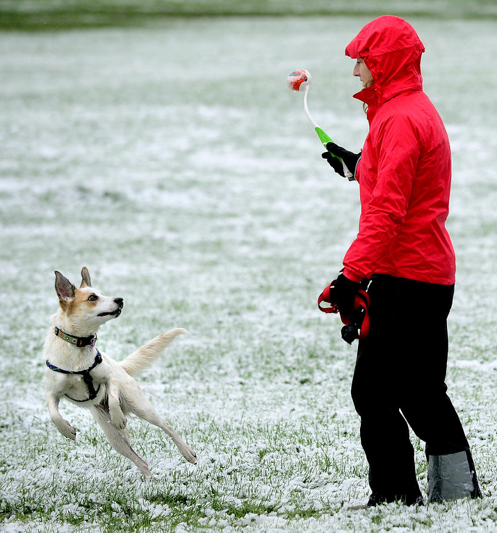 . Nellie Damrauer plays catch with her dog Jellybean in a snow-covered park in Boulder, Colo. on Friday, Oct. 4, 2013. (AP Photo/The Daily Camera, Paul Aiken)