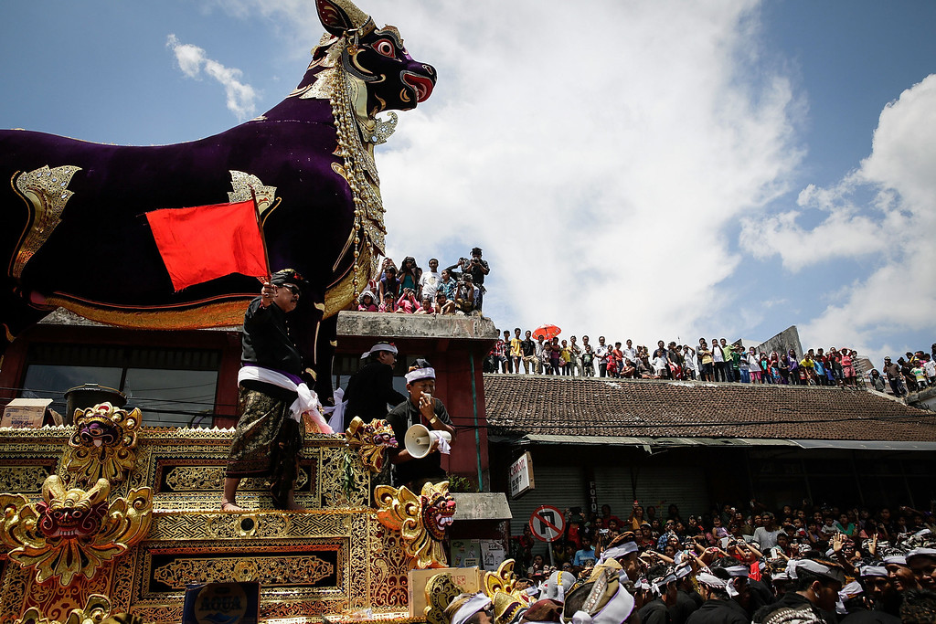 . Ubud local carry a bull-shaped sarcophagus to the cemetery during the Royal cremation ceremony on November 1, 2013 in Ubud, Bali, Indonesia. (Photo by Agung Parameswara/Getty Images)