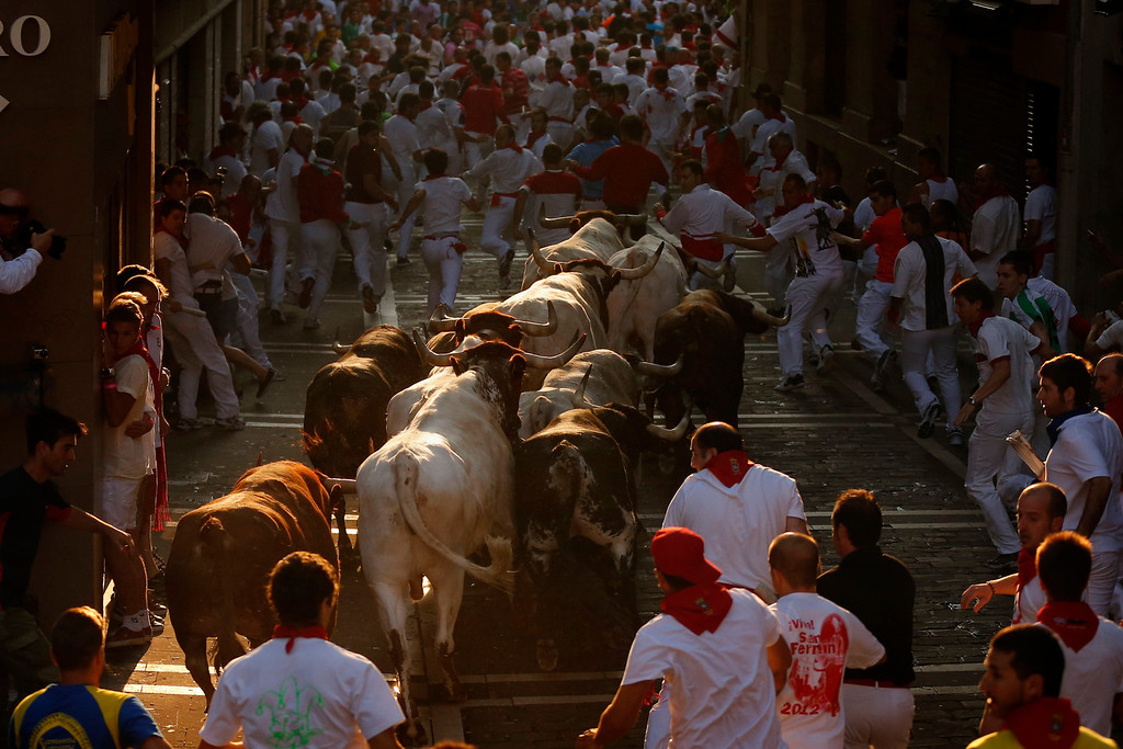 . Torrestrella ranch fighting bulls and revelers run during the running of the bulls of the San Fermin festival, in Pamplona, Spain, Wednesday, July 10, 2013. Revelers from around the world arrive to Pamplona every year to take part on some of the eight days of the running of the bulls. (AP Photo/Daniel Ochoa de Olza)
