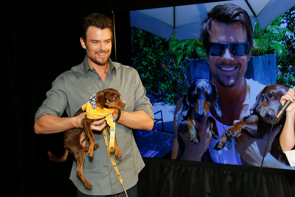 ". Actor Josh Duhamel holds a resuce dog named Charlie while he and Boston Red Sox baseball player David Ortiz, not pictured, helps launch Pedigree Brand\'s ""See what good food can do.\"" documentary-style campaign to help shelter dogs during the 2014 Sundance Film Festival, on Monday, Jan. 20, 2014 in Park City, Utah. (Photo by Danny Moloshok/Invision/AP)"