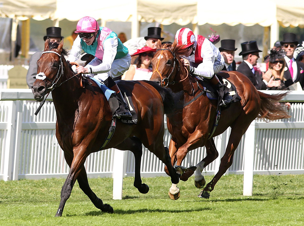 . Kingman ridden by James Doyle left, leads the field going on to win the St James\'s Palace Stakes, ahead of Night Of Thunder ridden by Richard Hughes, during Day One of the 2014 Royal Ascot Meeting, in Ascot, England, Tuesday June 17, 2014. (AP Photo/PA,  Steve Parsons)
