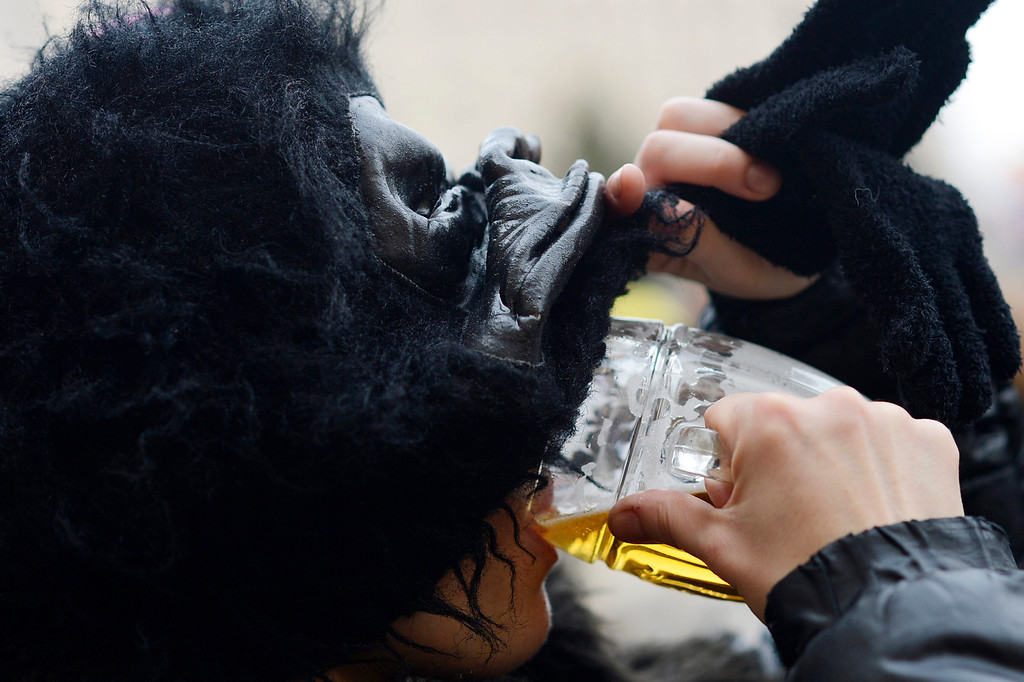 . A carnival goer wearing a gorilla cotume drinks a beer during the Malostranky carnival parade in Prague, Czech Republic, 01 March 2014. \'Masopust\' meaning carnival in Czech is considered the last opportunity to celebrate and eat rich food before the start of the 40-day Lent period.  EPA/FILIP SINGER