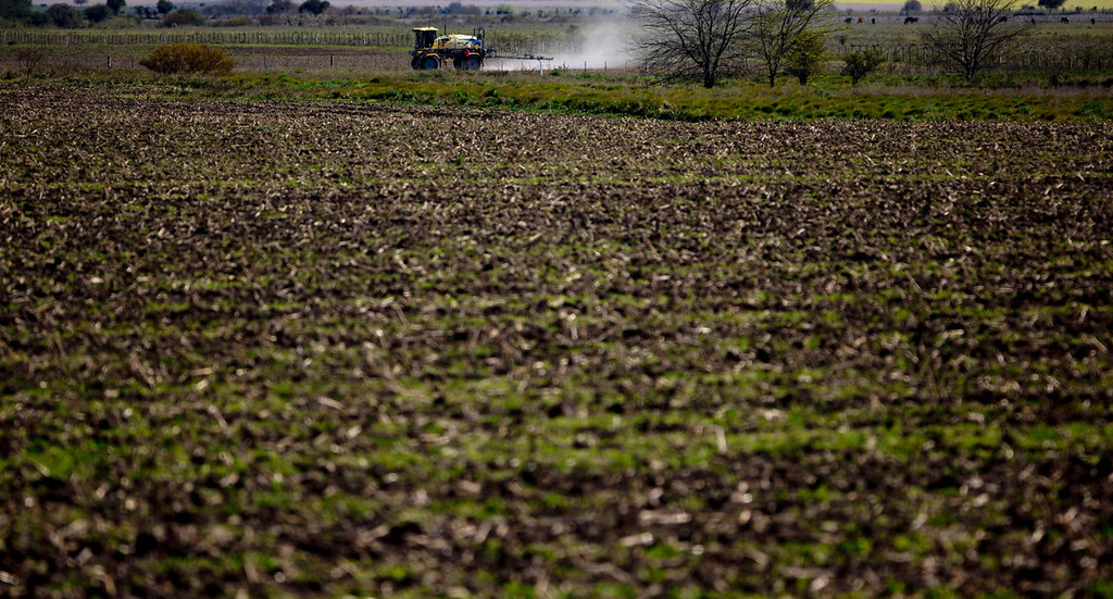 """. A tractor known as a \""""mosquito\"""" dusts a field near Parana, in the Entre Rios province, Argentina on Sept. 24, 2013. Most provinces forbid spraying next to homes and schools, ranging in distance from 50 meters to as much as several kilometers from populated areas. But The Associated Press found many cases of soybeans planted only a few feet from homes and schools, and of chemicals mixed and loaded onto tractors inside residential neighborhoods. (AP Photo/Natacha Pisarenko)"""