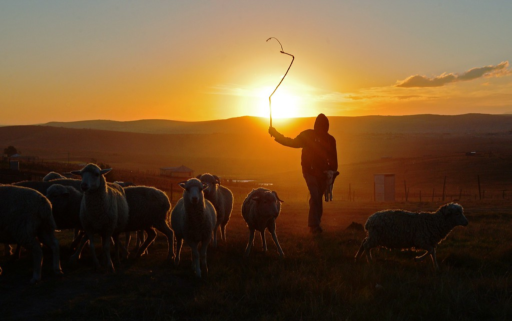 """. A shepherd boy is silhouetted on June 26, 2013, in Qunu a rural village where former South African President Nelson Mandela grew up. Mandela\'s close family members gathered to hear a sombre prayer wishing the anti-apartheid icon a \""""peaceful, perfect, end\"""" as he lay in hospital in critical condition with his life seemingly slipping away. CARL DE SOUZA/AFP/Getty Images"""