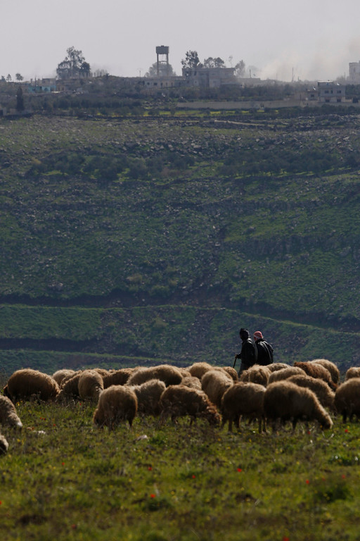 . The Syrian village of al-Jamlah is seen in the background, as shepherds herd sheep on the Syrian side of the Israeli-Syrian border, close to the ceasefire line between the two countries, as seen from the Israeli occupied Golan Heights March 7, 2013. Israel voiced confidence on Thursday that the United Nations could secure the release of U.N. peacekeepers seized by Syrian rebels near the Golan Heights, signalling it would not intervene in the crisis. Israel captured the Golan Heights in the 1967 Middle East war and annexed it in 1981 in a move not recognized internationally. REUTERS/Baz Ratner