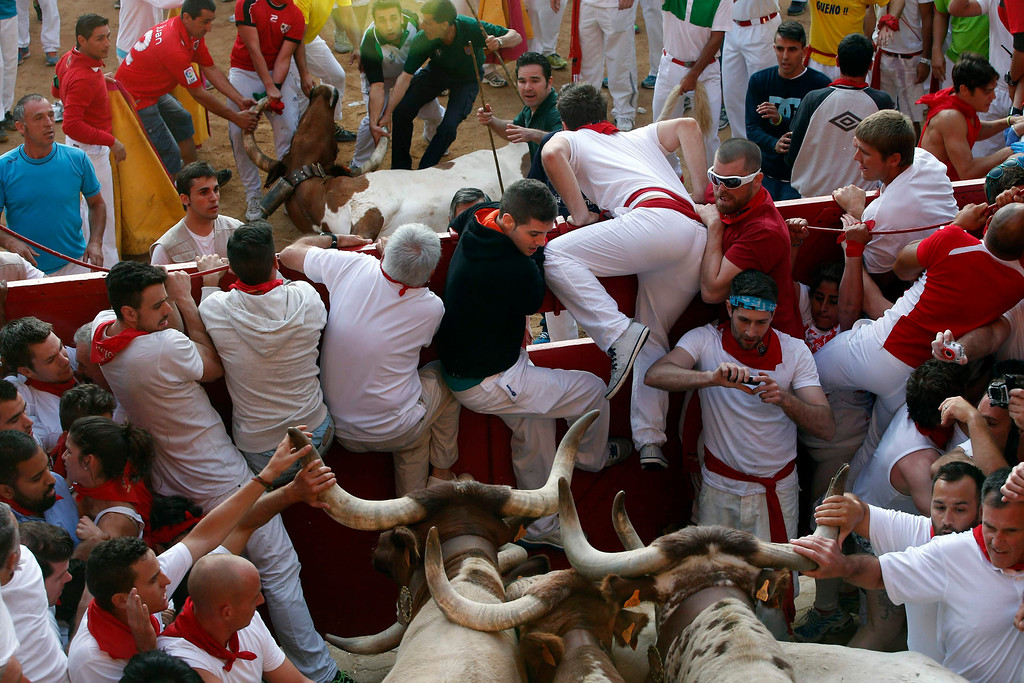 . Bull herders, also known as pastores, try to remove a dead steer (above C) from the bull ring as runners get trapped next to other steers at the entrance to the bull ring during the third running of the bulls at the San Fermin festival in Pamplona July 9, 2013. The steer died after crashing against a wooden post upon entering the bull ring in a run that lasted two minutes and twenty seven seconds, according to local media. REUTERS/Susana Vera
