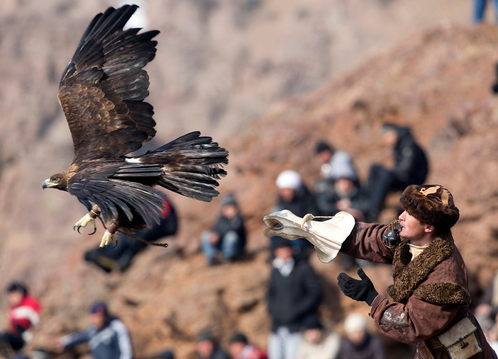 ". A Kazakh hunter releases his golden eagle during the hunting festival ""Sayat\"" in the village of Nura outside Almata on February 23, 2013. ANATOLIY USTINENKO/AFP/Getty Images"