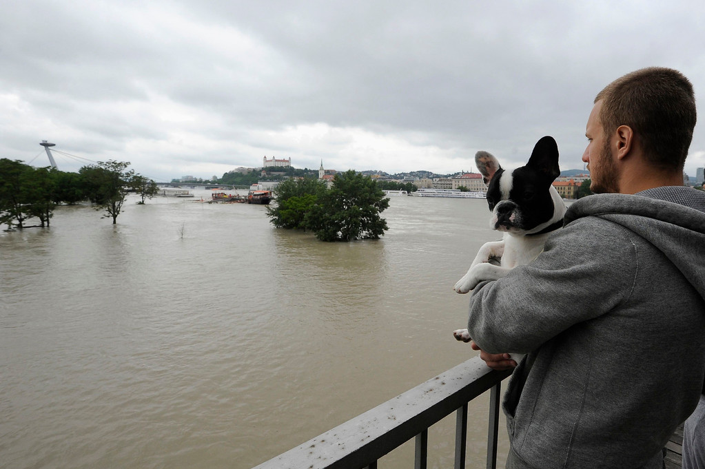 . A man holding a dog looks at flood waters from the Danube river in Bratislava June 5, 2013. REUTERS/Radovan Stoklasa