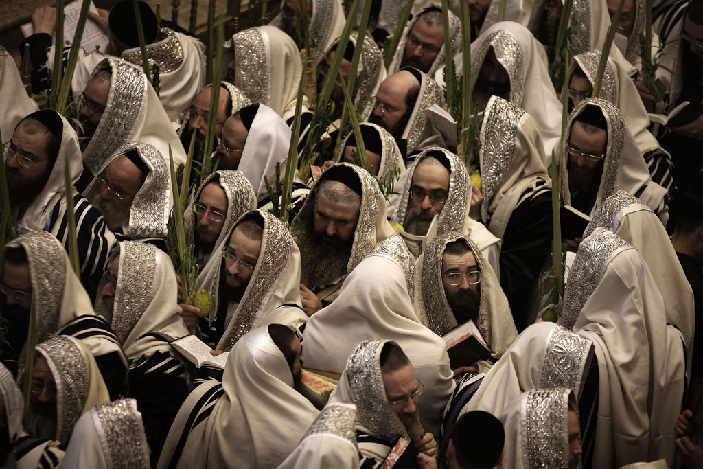 . Ultra-Orthodox Jews of the Belz Hasidic Dynasty hold the four plant species: the Lulav (palm leave stalk), the Etrog (citrus), the Hadas (myrtle) and the Arava (willow-branches), as they pray during the last day of Sukkot, or the feast of the Tabernacles, at their synagogue in  Jerusalem on September 25 , 2013. Thousands of Jews make the week-long pilgrimage to Jerusalem during Sukkot, which commemorates the desert wanderings of the Israelites after their exodus from Egypt. MENAHEM KAHANA/AFP/Getty Images