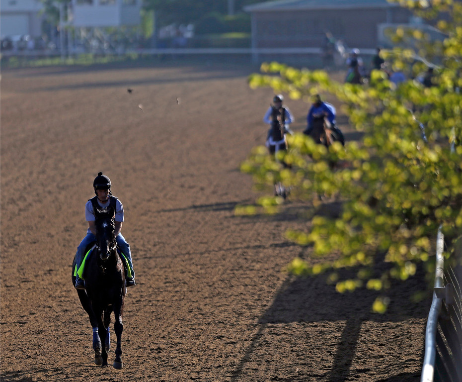 . Exercise rider Maurice Sanchez rides Kentucky Derby hopeful Mylute for a workout at Churchill Downs Wednesday, May 1, 2013, in Louisville, Ky. (AP Photo/David Goldman)