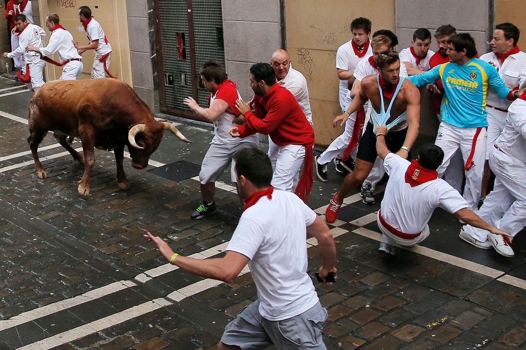 . A Miura fighting bull faces revelers before goring one of them during the running of the bulls at the San Fermin festival, in Pamplona, Spain, Monday, July 14, 2014. Revelers from around the world arrive to Pamplona every year to take part in some of the eight days of the running of the bulls. (AP Photo/Andres Kudacki)