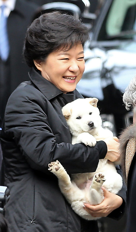 . South Korean new President Park Geun-hye holds a puppy presented by her neighbor as she leaves her home for the presidential inauguration ceremony in Seoul, South Korea, Monday, Feb. 25, 2013.  (AP Photo/Yonhap, Kim Hong-Ji)