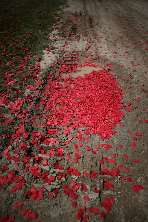 . BOVINGTON, UNITED KINGDOM - AUGUST 04:   Poppy flowers representing the dead fill tank tracks after a World War One centenary ceremony at the Tank Museum, Bovington on August 4, 2014 in England. Monday August 4, 2014  marks the 100th anniversary of Great Britain\'s declaration of war on Germany. In 1914 British Prime Minister Herbert Asquith announced at 11 pm that Britain was to enter the war after Germany had violated Belgium neutrality. The First World War or the Great War lasted until 11 November 1918 and is recognised as one of the deadliest historical conflicts with millions of causalities. A series of events commemorating the 100th anniversary are taking place throughout the day.  (Photo by Peter Macdiarmid/Getty Images)