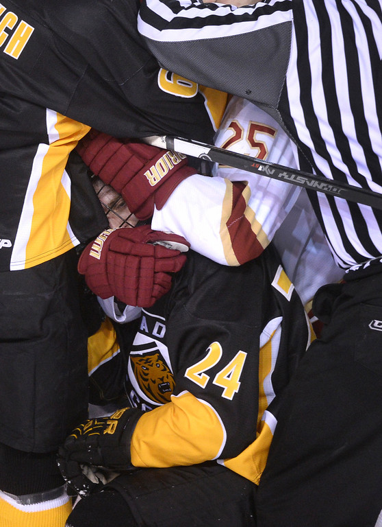 . DENVER, CO. - FEBRUARY 21, 2014: Denver center Matt Tabrum (25) and Tigers\' wing Jared Hanson (24) were at the bottom of a pile of players in the third period. The Colorado College hockey team defeated Denver 3-2 at Magness Arena Friday night, February 21, 2014. Photo By Karl Gehring/The Denver Post
