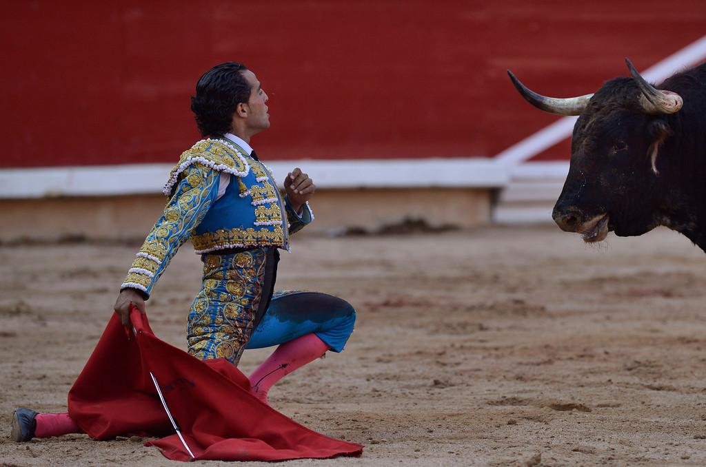 . Spanish bullfighter Ivan Fandino performs in front of a  Torrestrella\' ranch bull, during a bullfight, at the San Fermin fiestas, in Pamplona northern Spain on Thursday, July 11, 2013. (AP Photo/Alvaro Barrientos)