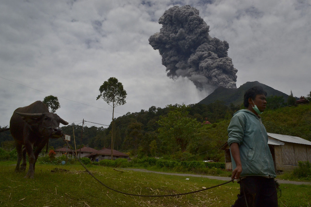 . An Indonesian farmer leaves with his carabao in the district of Karo as an ash cloud rises during a fresh eruption of the Mount Sinabung volcano on September 17, 2013. Thousands of villagers fled after Mount Sinabung\'s series of volcanic eruptions on Indonesia\'s Sumatra island, spewing rocks and red-hot ash onto surrounding villages, officials said.   SUTANTA ADITYA/AFP/Getty Images