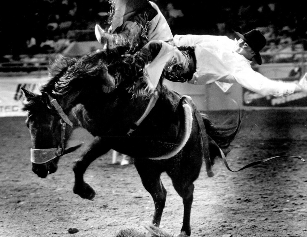 . Russ Biglow performs in the bareback bronc competition. Denver Post Library photo archive