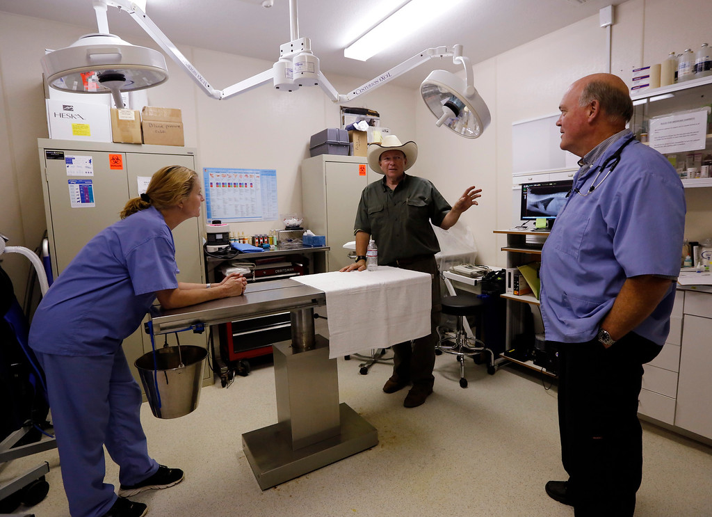 . Leo Grillo, center, his former wife and veterinary assistand Stacy Grillo, and veterinarian Dr. Gaylord Brown chat in an exam room at the fully-equipped veterinary hospital at Leo Grillo\'s his DELTA (Dedication & Everlasting Love to Animals) Rescue complex in Acton, Calif. Aug. 29, 2013.  (AP Photo/Reed Saxon)