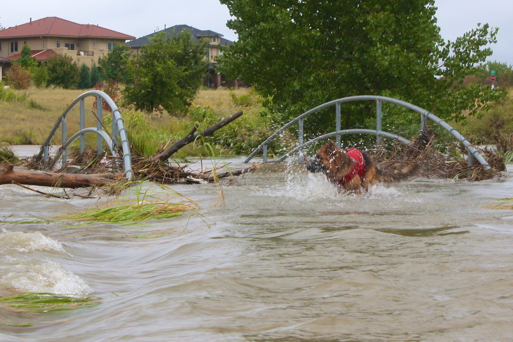 . Bridge underwater in Stapleton. Photo by Sandy Tseng