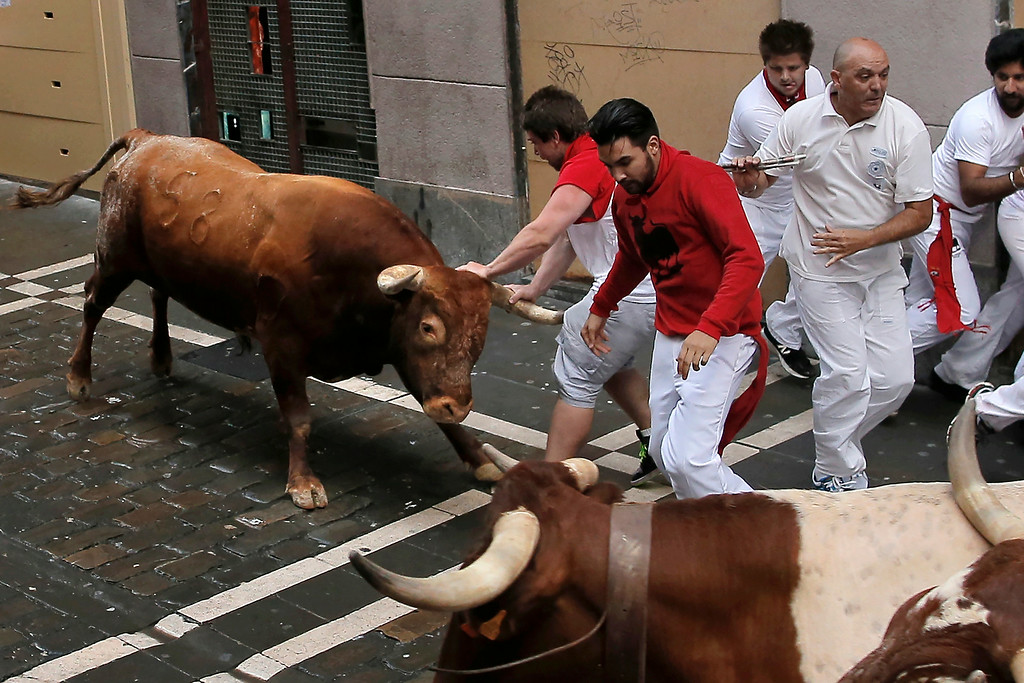 . A Miura fighting bull gores a reveler during the running of the bulls at the San Fermin festival, in Pamplona, Spain, Monday, July 14, 2014. (AP Photo/Andres Kudacki)