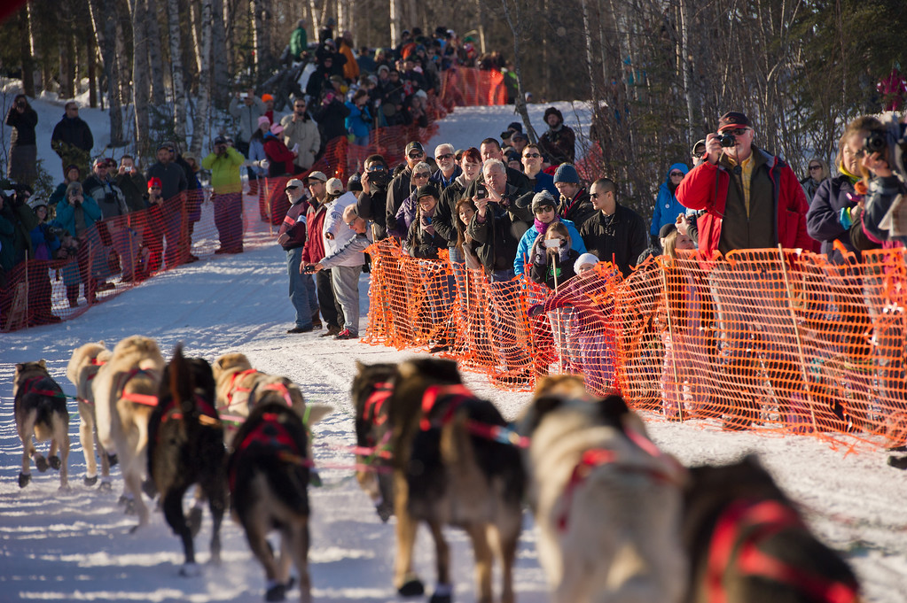 . Fans line up along the course for the start of the Iditarod Trail Sled Dog Race on Willow Lake, Sunday, March 2, 2014, in Willow, Alaska. The race will take mushers nearly a thousand miles to the finish line in Nome, on Alaska\'s western coast. (AP Photo/Anchorage Daily News, Marc Lester)