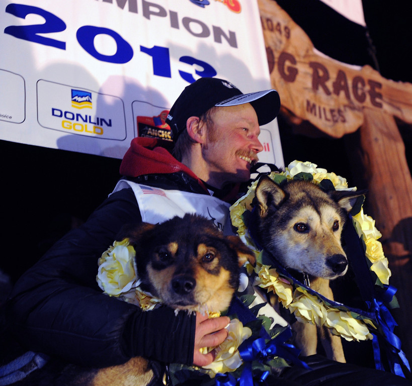 . Mitch Seavey holds his lead dogs, Tanner, left, and Taurus, as he poses for photographers at the finish line of the Iditarod Trail Sled Dog race in Nome, Alaska, Tuesday, March 12, 2013.  Seavy became the oldest winner and a two-time Iditarod champion.   (AP Photo/The Anchorage Daily News, Bill Roth)