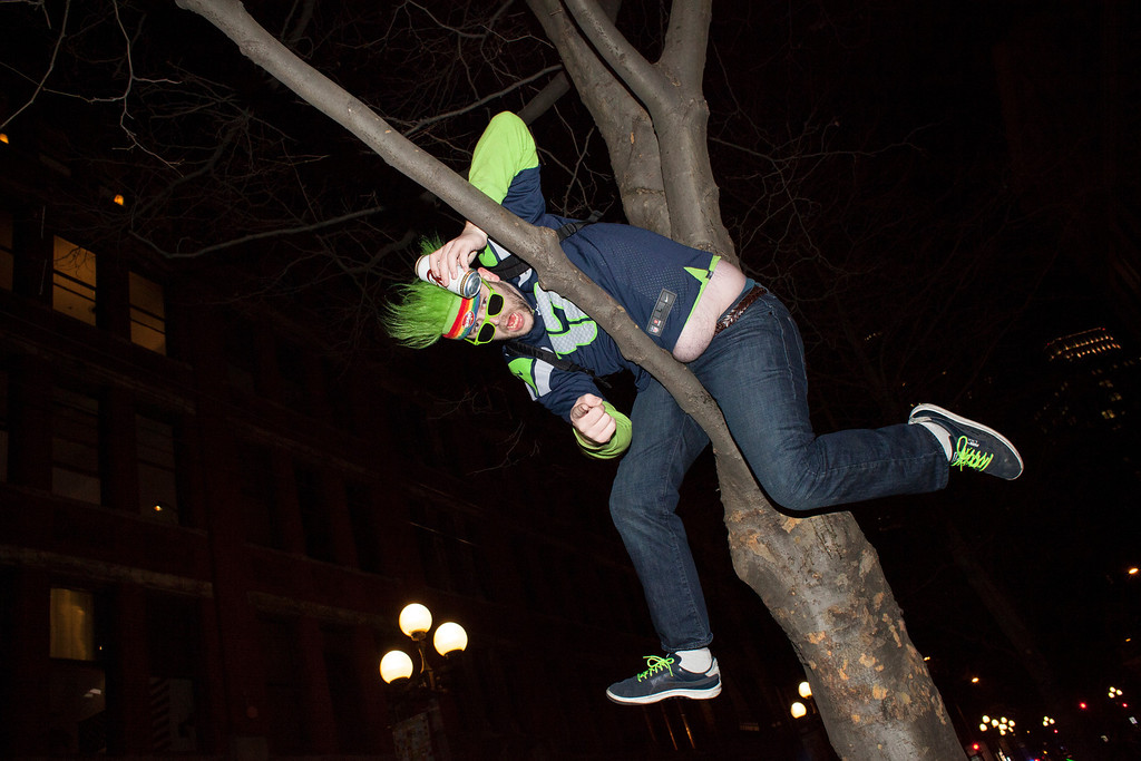 . A Seattle Seahawks fan celebrates in a tree after watching his team win the Super Bowl on February 2, 2014 in Seattle, Washington. The Seahawks defeated the Denver Broncos 43-8 in Super Bowl XLVIII.  (Photo by David Ryder/Getty Images)