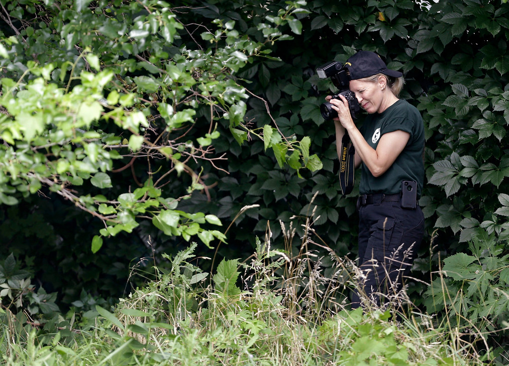 . A woman from the Ohio Bureau of Criminal Identification and Investigation takes pictures in a wooded area Sunday, July 21, 2013 near where three bodies were recently found in East Cleveland, Ohio. Searchers rummaging through vacant houses in a neighborhood where three female bodies were found wrapped in plastic bags should be prepared to find one or two more victims, a police chief said Sunday. (AP Photo/Tony Dejak)