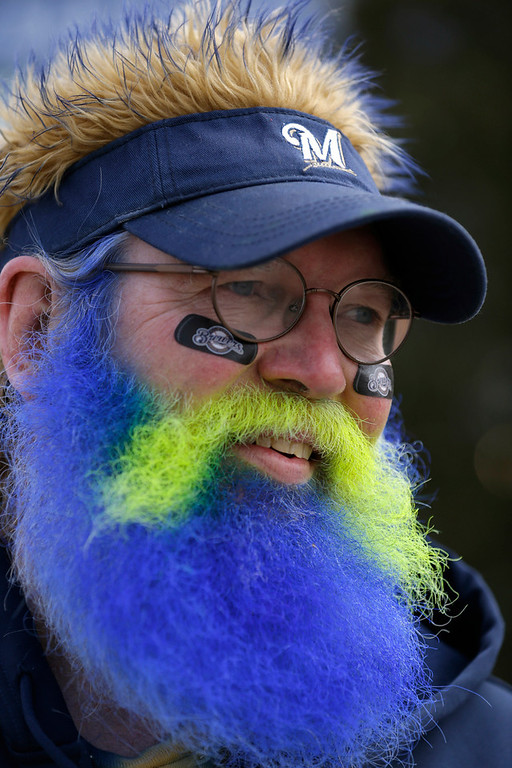 . A fan with a colored beard looks on before the Opening Day baseball game between the Milwaukee Brewers and Colorado Rockies Monday, April 1, 2013, in Milwaukee. (AP Photo/Jeffrey Phelps)